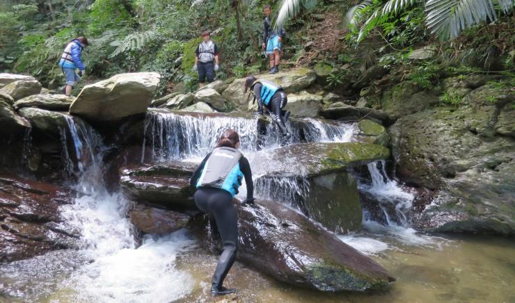 手つかずのジャングルの中の川を上る