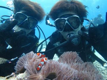 美ら海体験ダイビング2名様