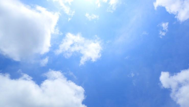 久々に青空と太陽がお見えになりました