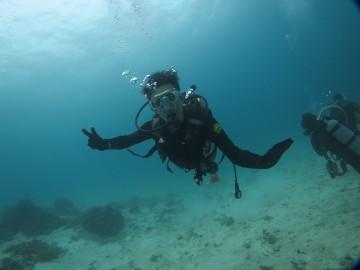 青の洞窟シュノーケル&美ら海体験ダイビングSET×1名様
