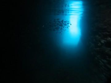 青の洞窟体験ダイビング×2名様(写真NG)