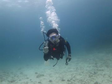 美ら海体験ダイビング×1名様