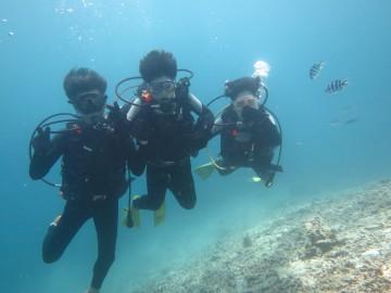 青の洞窟シュノーケル&美ら海体験ダイビングセット×3名様