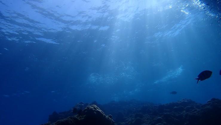 海中に差し込む光
